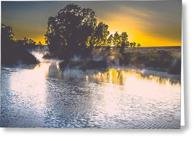 Photo Art Gallery Greeting Cards - Healing Greeting Card by George Fivaz