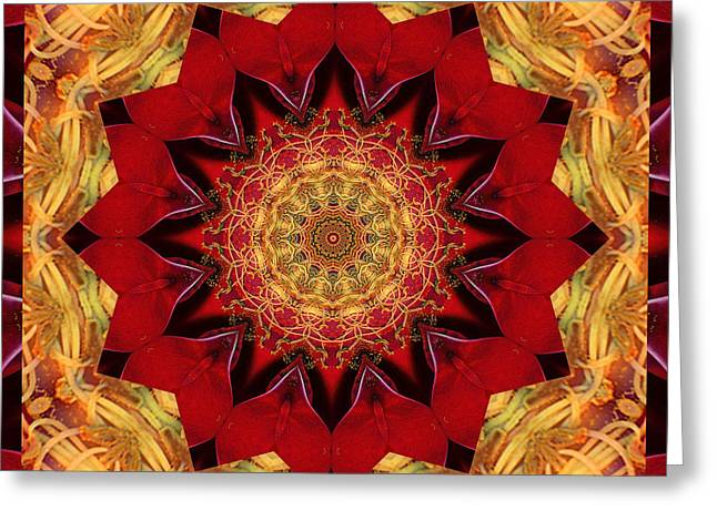 Mandala Photographs Greeting Cards - Healing Mandala 28 Greeting Card by Bell And Todd