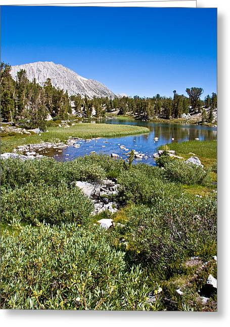 Heart Lake Greeting Cards - Heart Lake Folaige Greeting Card by Chris Brannen