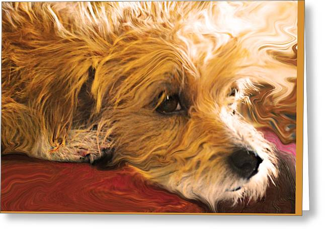 Puppy Digital Greeting Cards - Heart of Gold Greeting Card by Wendy Martinez