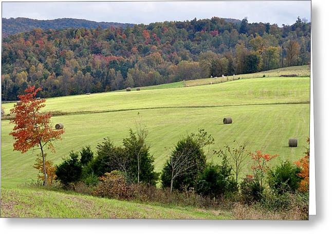 Recently Sold -  - Tennessee Hay Bales Greeting Cards - Heart Of The Country Greeting Card by Jan Amiss Photography