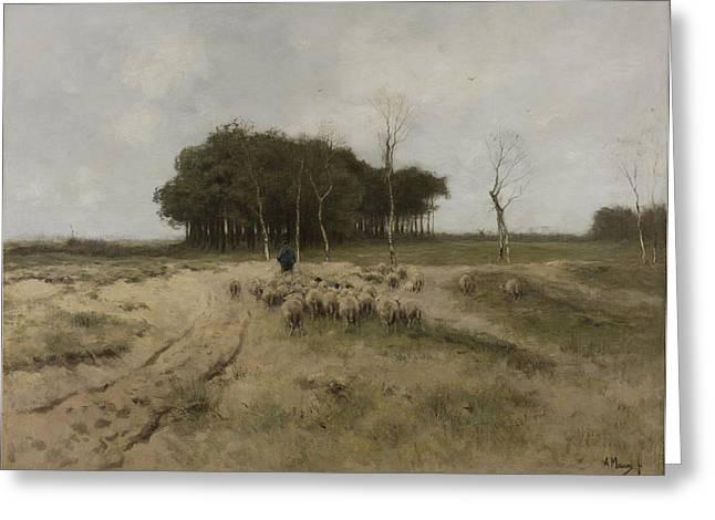 Dutch Shepherd Greeting Cards - Heath near Laren Holland  Greeting Card by Anton Mauve