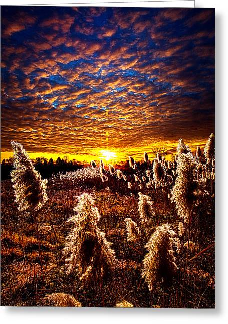 Myhorizonart Greeting Cards - Heaven and Earth Greeting Card by Phil Koch