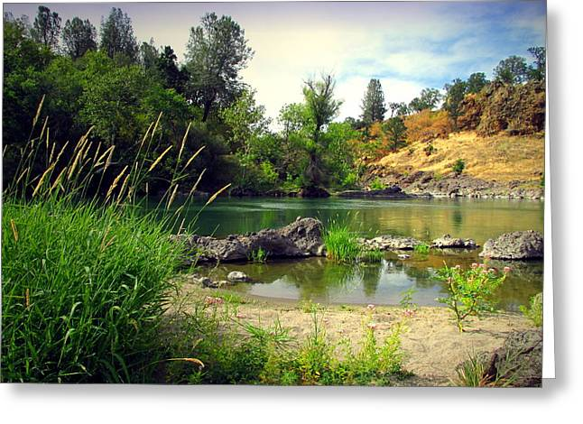Artist Photographs Greeting Cards - Heavenly Beauty Of The Sacramento River Greeting Card by Joyce Dickens