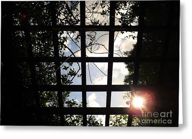 Artist Photographs Greeting Cards - Heavens Door Greeting Card by Robyn King