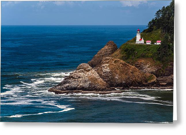 Sea Lions Greeting Cards - Heceta Head Lighthouse Greeting Card by William  Dziuk