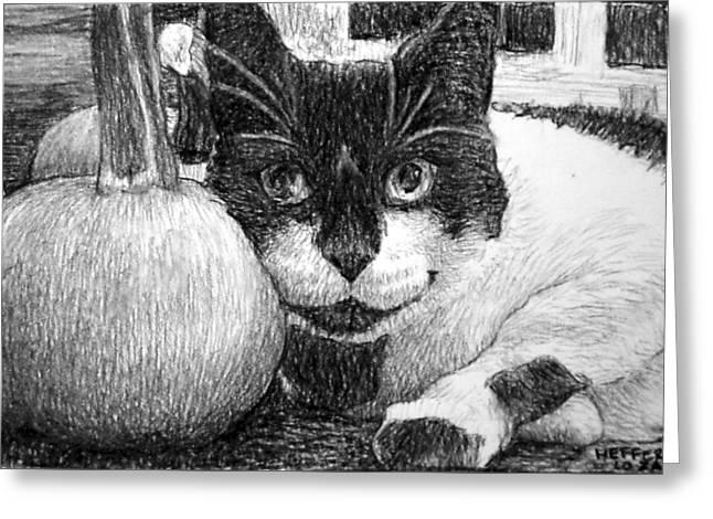 Heffer's Pumpkin Pillow Greeting Card by Lorraine Zaloom