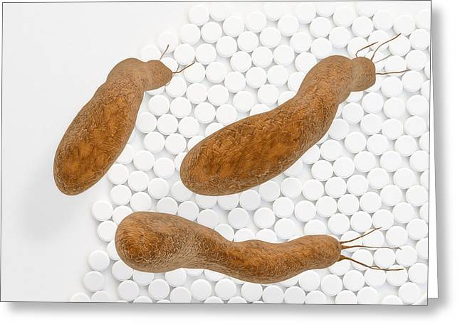 Bloat Greeting Cards - Helicobacter pylori - 3d rendered illustration Greeting Card by Xt Render