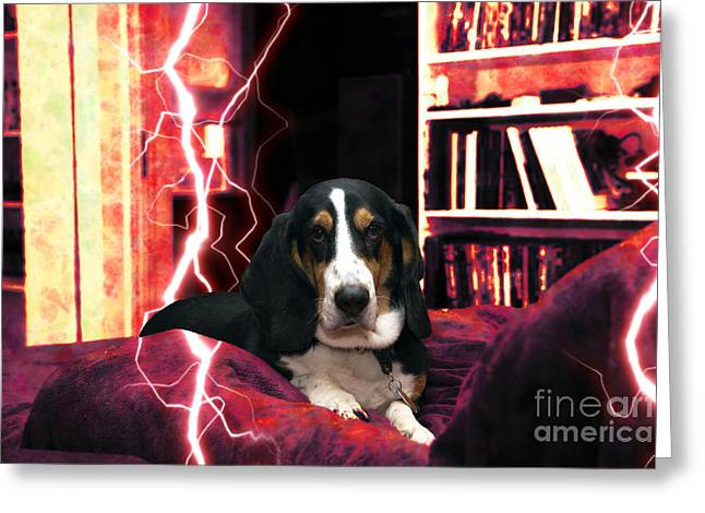 Fashion Photos For Sale Greeting Cards - Hell Hound Greeting Card by John Rizzuto