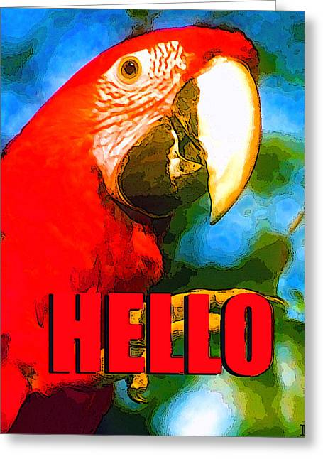 Parrot Digital Art Greeting Cards - Hello red bird Greeting Card by David Lee Thompson