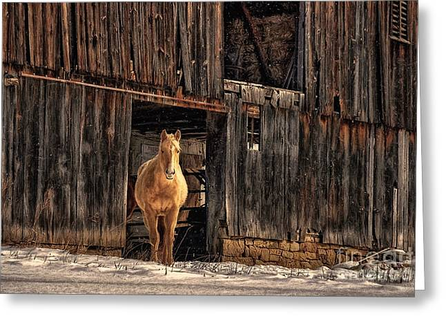 Barns In Snow Greeting Cards - Hello Sweetheart Greeting Card by Lois Bryan