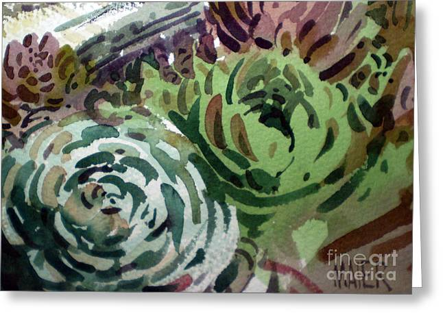 Succulents Greeting Cards - Hen and Chicks Greeting Card by Donald Maier