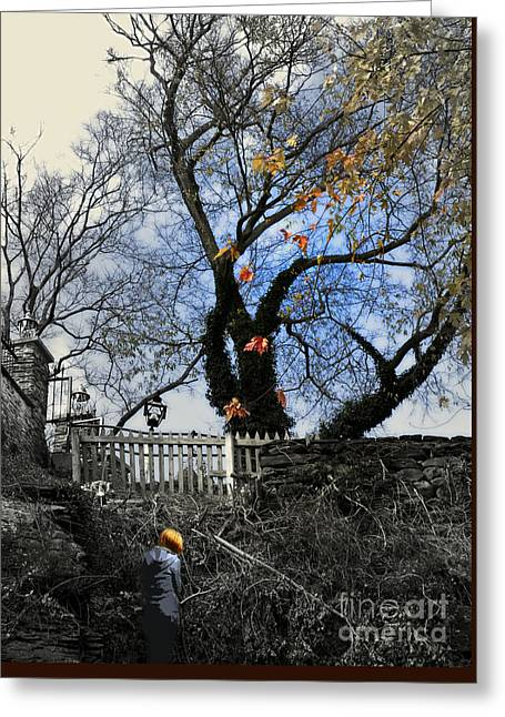 Her Private Autumn  Greeting Card by Steven  Digman