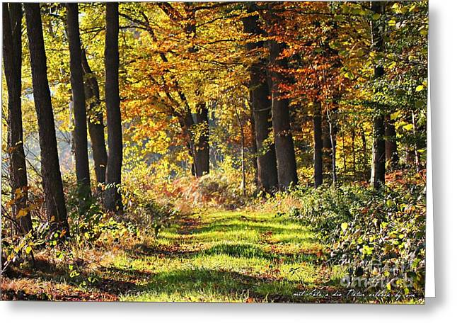 Herbsttag Greeting Card by Olivia Narius