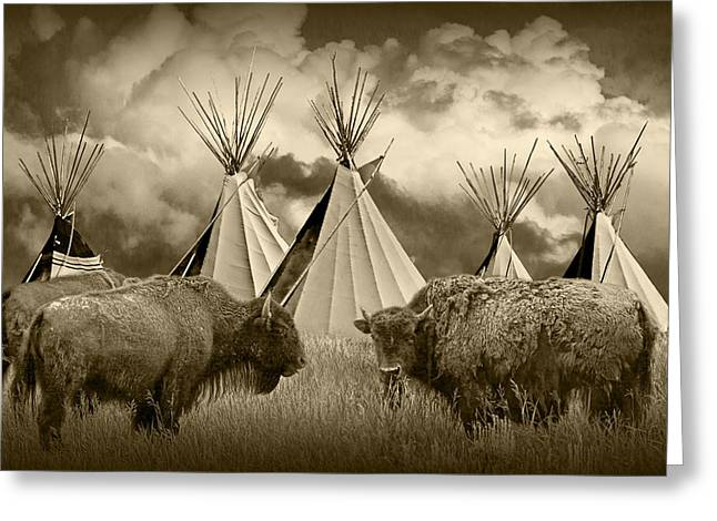 Powwow Greeting Cards - Herd of Buffalo and Teepees of the Blackfoot Tribe Greeting Card by Randall Nyhof