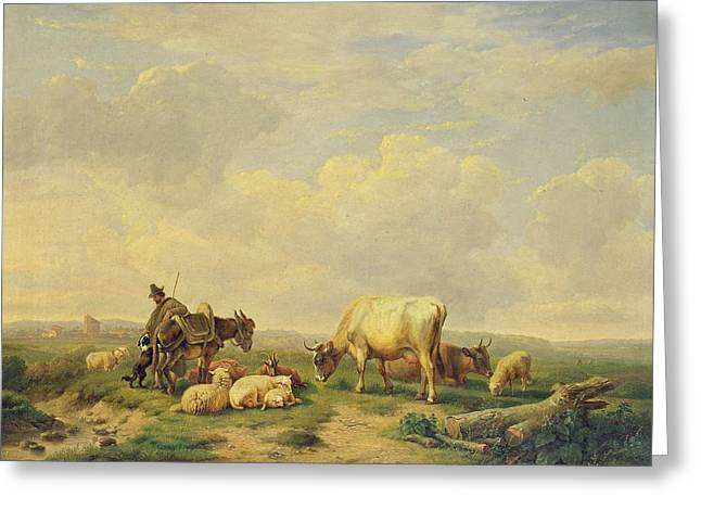 Collie Greeting Cards - Herdsman and Herd Greeting Card by Eugene Joseph Verboeckhoven