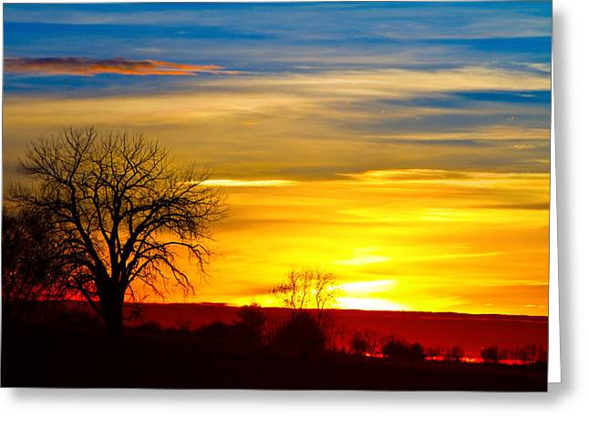 Here Comes The Sun Greeting Card by James BO  Insogna