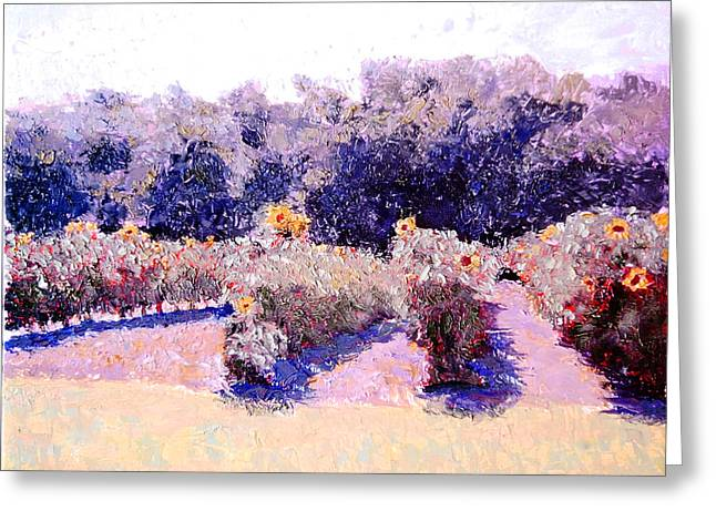 Impressionist Greeting Cards - Here Comes the Sun redux Greeting Card by David Zimmerman