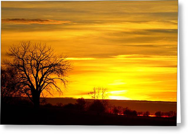 Sunset Prints Greeting Cards - Here Comes The Sunrise Greeting Card by James BO  Insogna