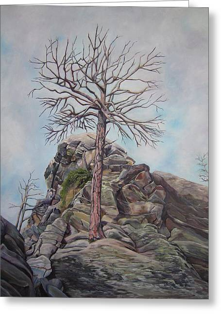 Growing Out Of Rock Greeting Cards - Here I Am Greeting Card by Sheila Vander Wier