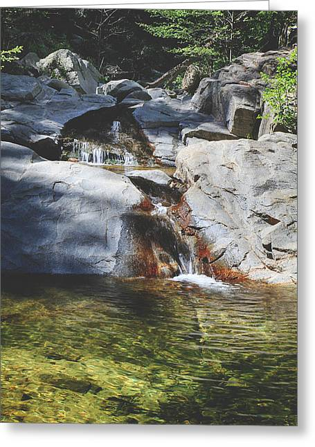 Falling Water Creek Greeting Cards - Here I Soak You In Greeting Card by Laurie Search