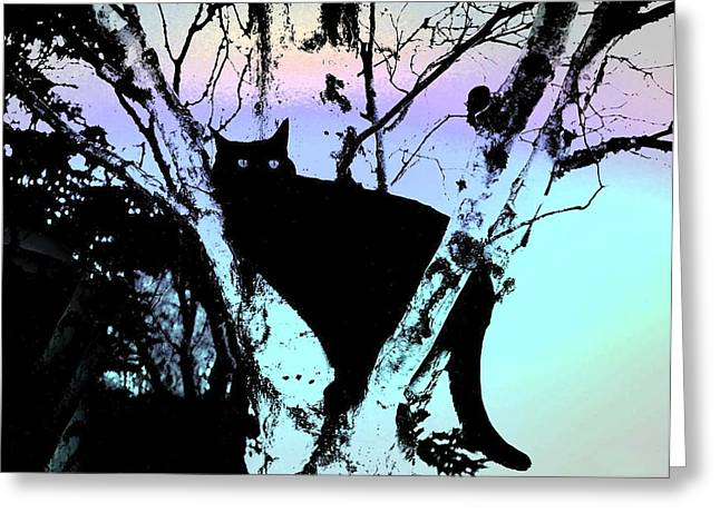 Shirley Sirois  Greeting Cards - Here Kitty Kitty Greeting Card by Shirley Sirois