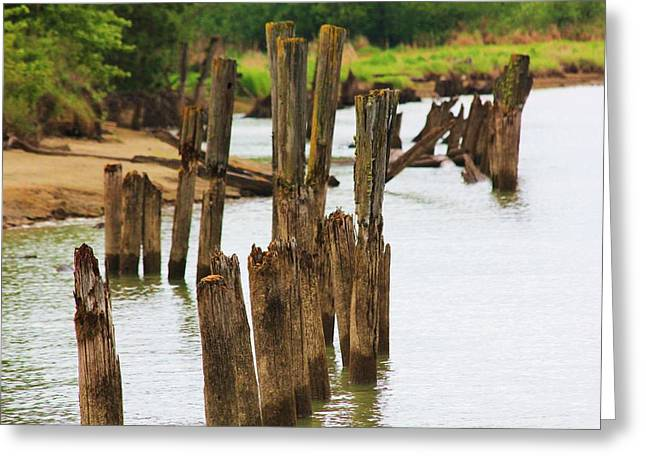 Grapple Greeting Cards - Heritage Pilings Greeting Card by Roxanne Basford