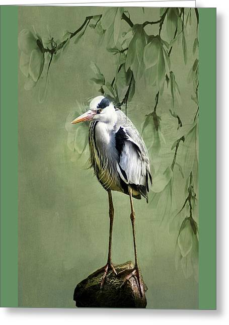 Heron Egret Bird Greeting Card by Movie Poster Prints