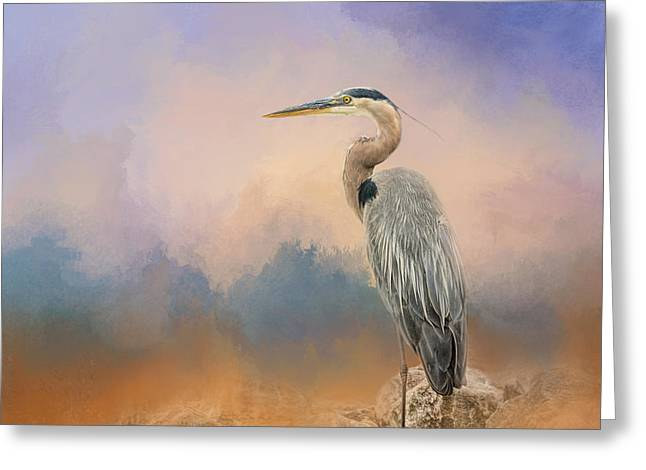 On The Beach Greeting Cards - Heron On The Rocks Greeting Card by Jai Johnson