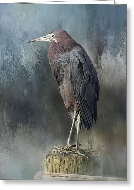 Heron Profile Greeting Card by Kim Hojnacki