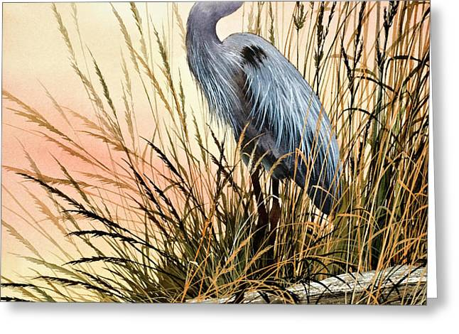 Heron Sunset Greeting Card by James Williamson