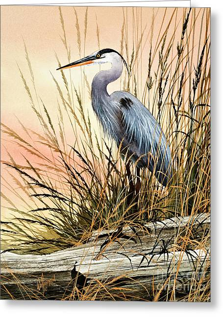 Wildlife Art Posters Greeting Cards - Heron Sunset Greeting Card by James Williamson