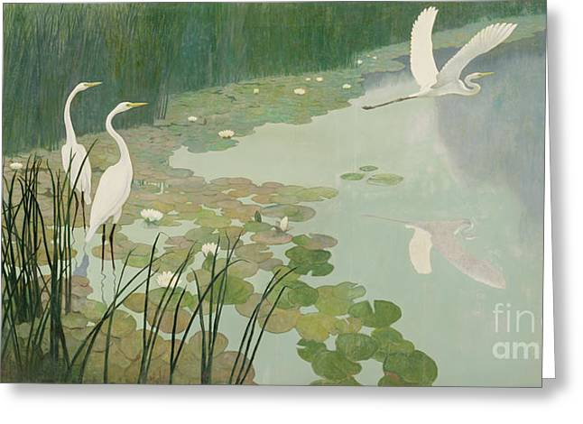 Herons In Summer Greeting Card by Newell Convers Wyeth
