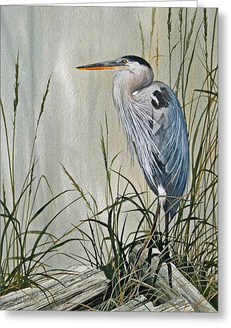 Heron Greeting Card Greeting Cards - Herons Quiet Rest Greeting Card by James Williamson