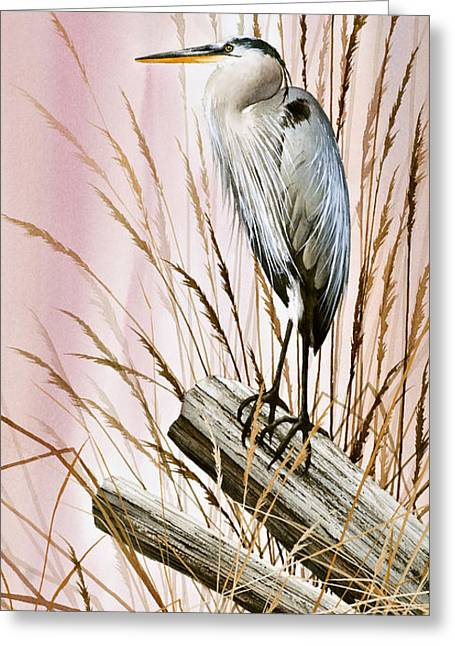 Heron Greeting Card Greeting Cards - Herons Watch Greeting Card by James Williamson