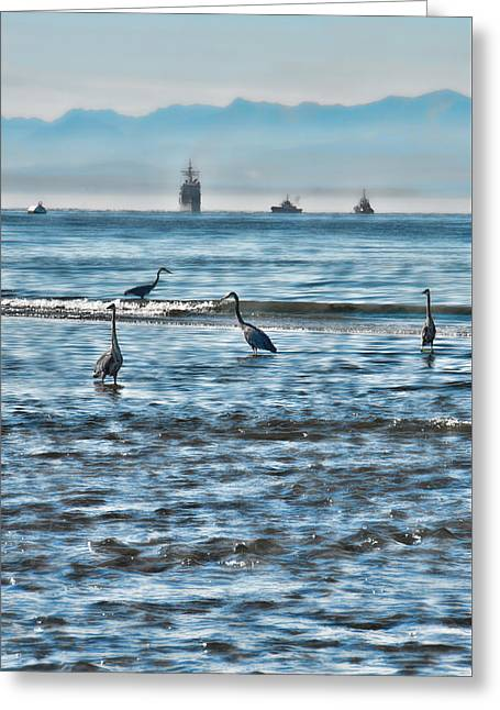 Hunting Bird Greeting Cards - Symmetry 2 Greeting Card by Marilyn Wilson