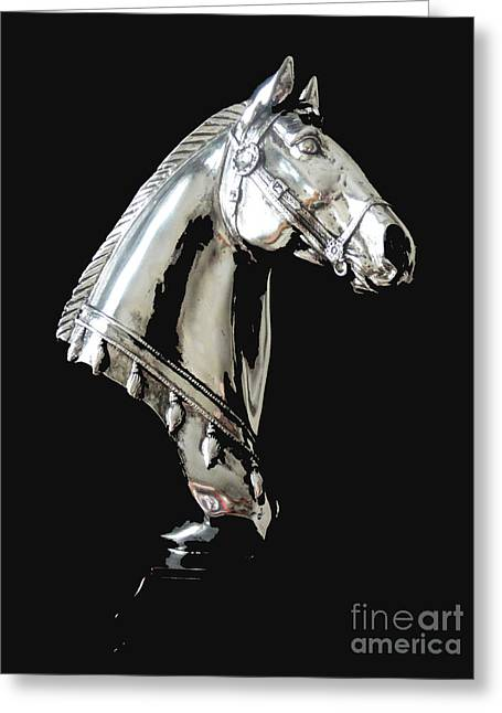 Lone Horse Photographs Greeting Cards - Hi Ho Silver Greeting Card by Al Bourassa