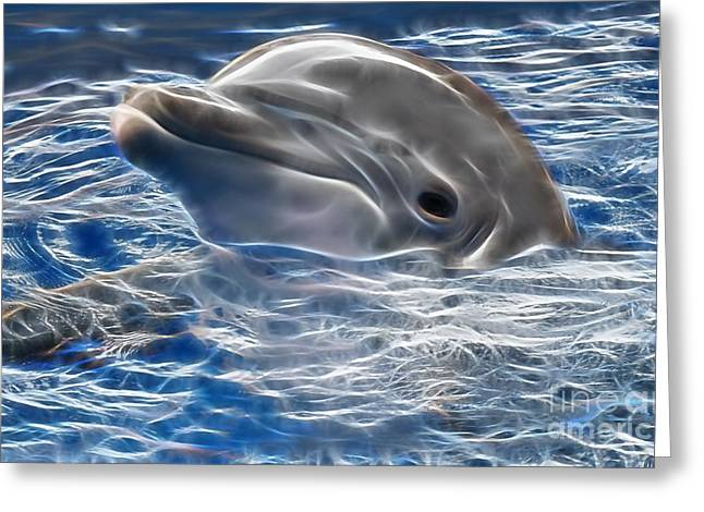 Dolphin Greeting Cards - Hi Greeting Card by Marvin Blaine