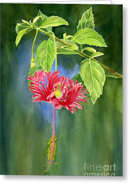 Hibiscus Chinese Red Lantern With Background Greeting Card by Sharon Freeman