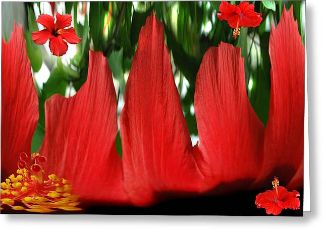 Floral Digital Art Greeting Cards - Hibiscus  Forest. Greeting Card by Terence Davis