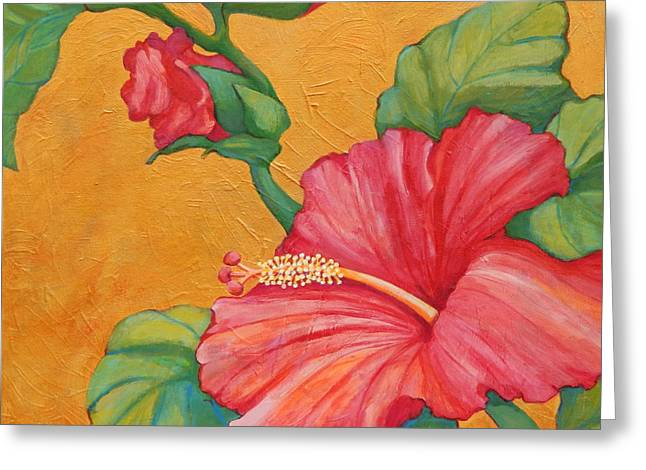 Sea Birds Greeting Cards - Hibiscus Rhapsody Greeting Card by Sharon Nelson-Bianco