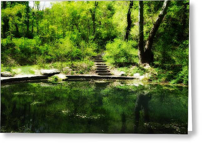 Nature Center Greeting Cards - Hidden Pond at Schuylkill Valley Nature Center Greeting Card by Bill Cannon