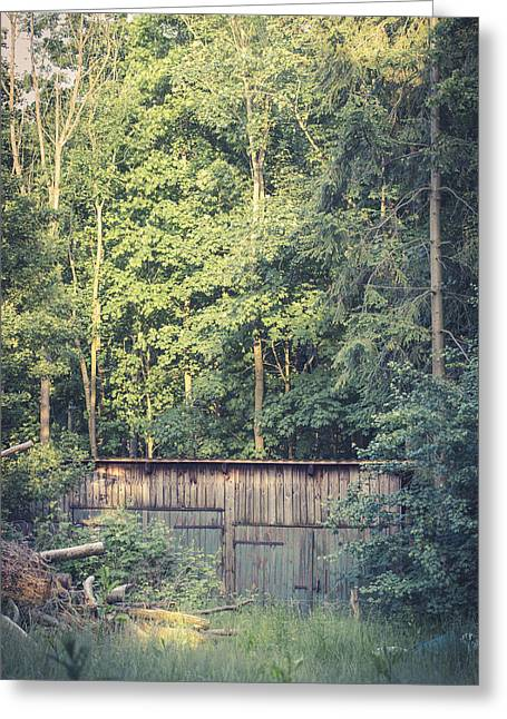 Barn Door Greeting Cards - Hidden Shed Greeting Card by Michael Held
