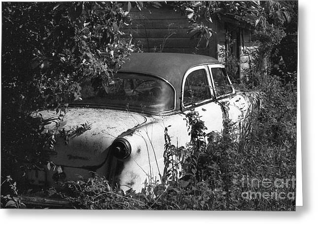 Rusted Cars Greeting Cards - Hidden Treasure Greeting Card by Richard Rizzo