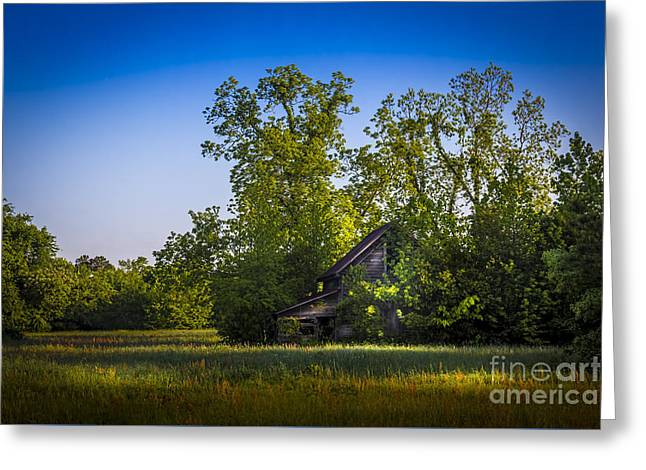 Barn Yard Photographs Greeting Cards - Hidden Treasures Greeting Card by Marvin Spates