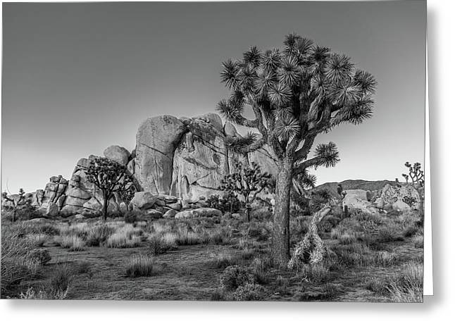 California Deserts Greeting Cards - Hidden Valley Rock Greeting Card by Peter Tellone