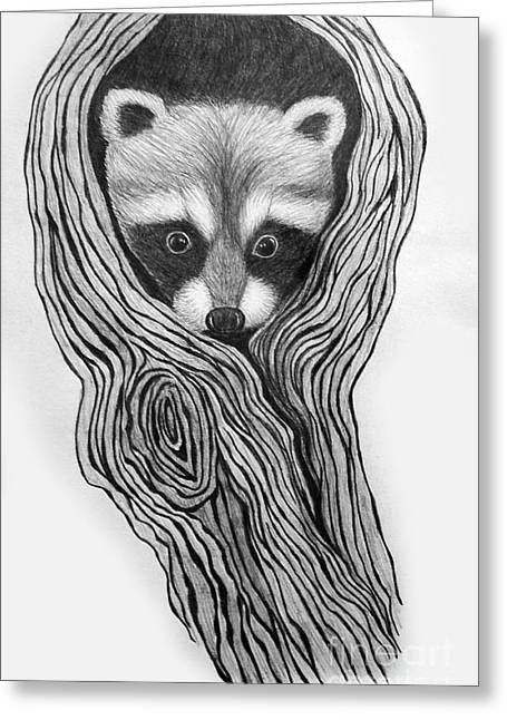 Raccoon Greeting Cards - Hiding out Greeting Card by Nick Gustafson