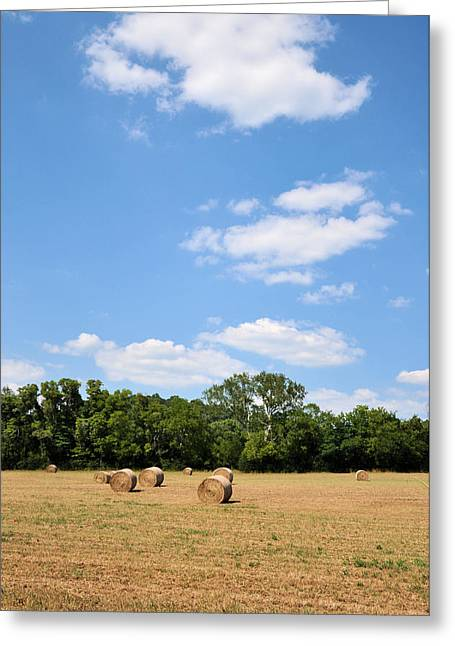 Tennessee Hay Bales Greeting Cards - High As The Sky Greeting Card by Jan Amiss Photography