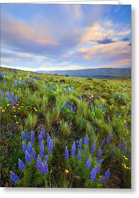 Central Washington Greeting Cards - High Desert Spring Greeting Card by Mike  Dawson