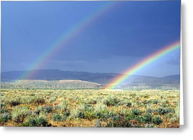 Marty Koch Greeting Cards - High Dessert Rainbow Greeting Card by Marty Koch